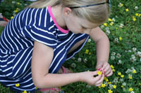 Picture of a child picking flowers
